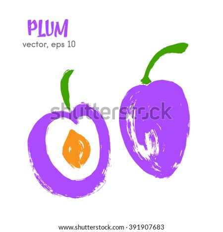 Sketched fruit illustration of plum. Hand drawn brush food ingredient. Vector bio and eco icon, logo design template. Concept for organic products, harvest, healthy food, vegetarian, raw food diet.  - stock vector