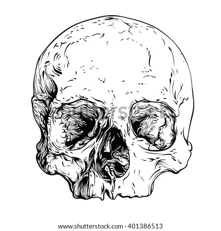 how to draw a realistic human skull