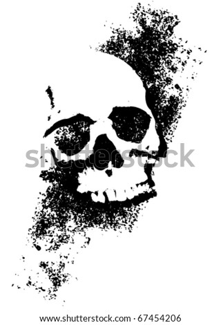 Skull with texture - stock vector