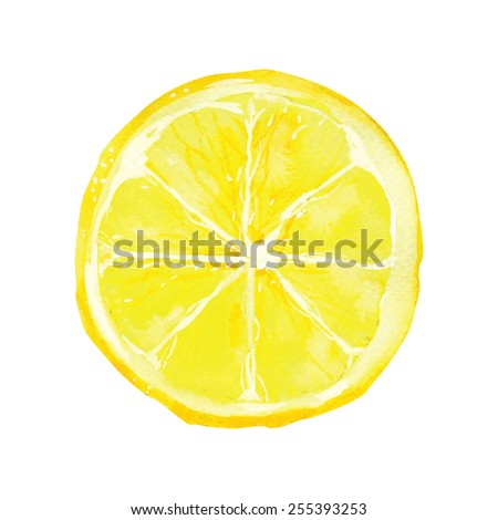 slice of lemon drawing by watercolor, hand drawn vector illustration - stock vector