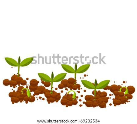Small germinal plants growing from soil. Vector illustration - stock vector