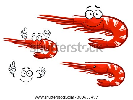 Small red shrimp cartoon character with long antennae and curved tail showing upward, isolated on white, for seafood menu design - stock vector