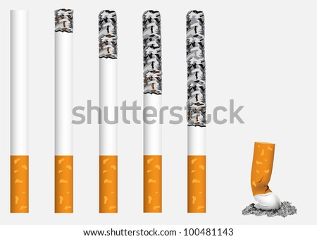 Smoldering, exhibited in a row, cigarettes. - stock vector