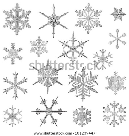 Snowflake collection / vintage illustration from Meyers Konversations-Lexikon 1897 - stock vector
