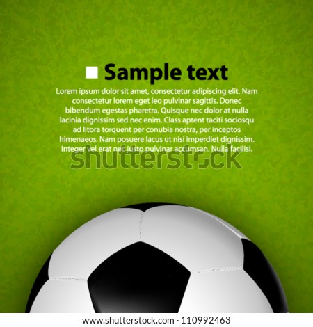 soccer ball on the field - stock vector