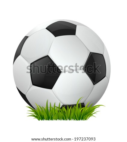 Soccer ball on the grass. Vector illustration. - stock vector