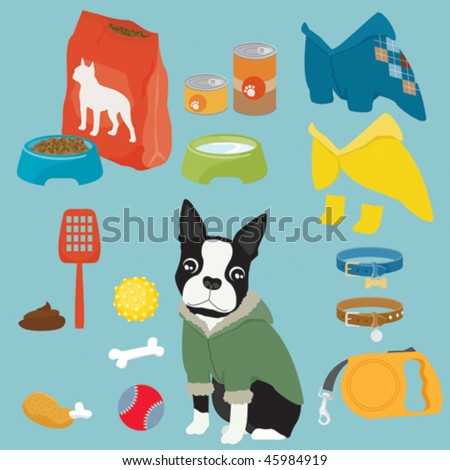 Some cute stuff for a puppy of Boston Terrier (male) - stock vector