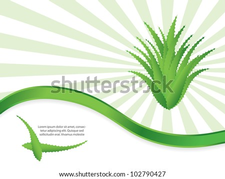 special green background with aloe vera design - stock vector