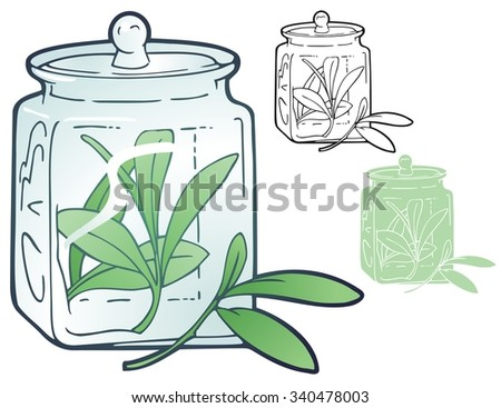Spice jar with sprigs of tarragon - stock vector
