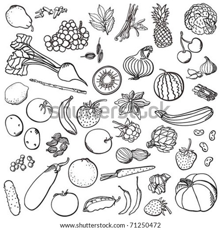 Spices&vegetables&fruits set - stock vector