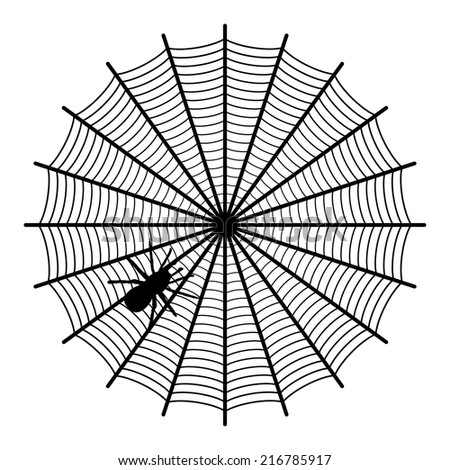 spider on a web  - stock vector