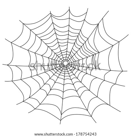 Spider web isolated on white, vector illustration - stock vector