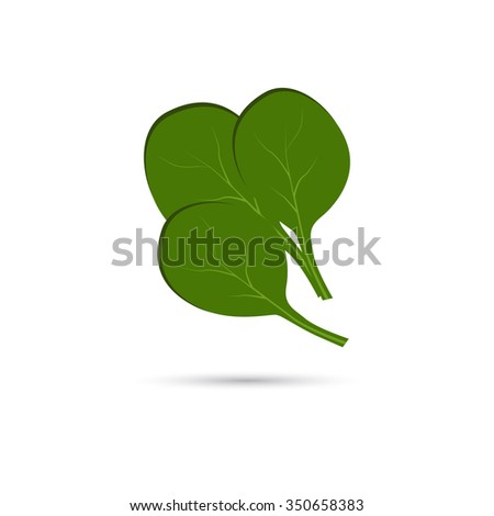 Spinach Stock Vectors & Vector Clip Art | Shutterstock