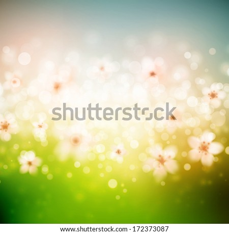 Spring background with flowers. Eps 10 - stock vector