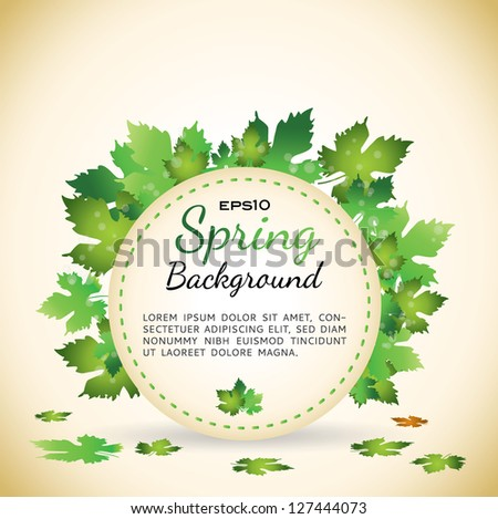 spring background with grape leafs - stock vector