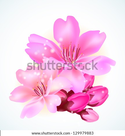 Spring cherry blossoms. - stock vector