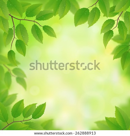 Spring green leaves background, vector illustration - stock vector