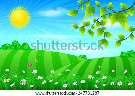 Spring meadow - stock vector