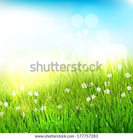 Spring meadow with tall grass - vector background - stock vector