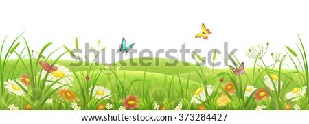 Spring summer meadow, green grass, flowers and butterflies - stock vector