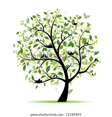 Spring tree green with birds for your design - stock vector