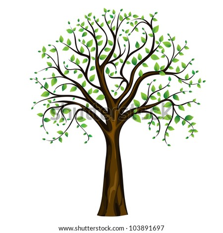 Spring tree on the white background, vector image - stock vector