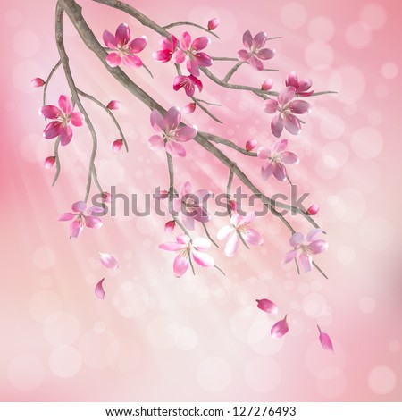 Spring vector tree branch cherry blossom flower. Floral artistic design with beautiful pink cherry (plum) blooming flowers, tree branch, fallen petals, sun rays, light effect on pastel blur background - stock vector