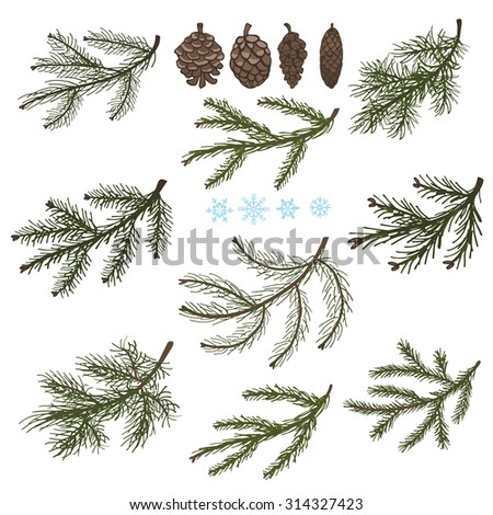 Spruce tree green branches,pine cones.Christmas tree, fir isolated decor elements for invitations,print and web,cards, banner.New year holiday vector,nature wood illustration,Winter template - stock vector