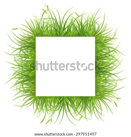 Square frame with green grass on white, vector illustration - stock vector
