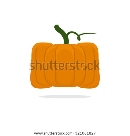 Square pumpkin. Unusual Vegetable for Halloween. Vegetable fruit cubic form