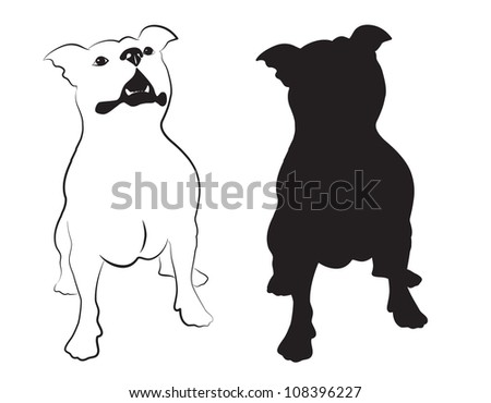 Staffordshire terrier vector - stock vector