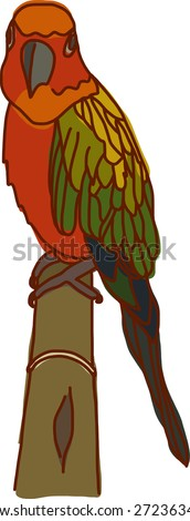 Staring Parrot - stock vector