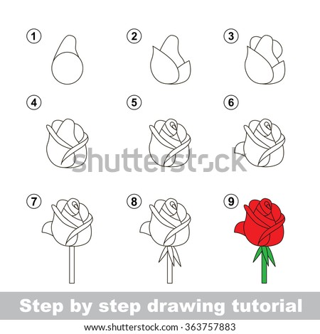 Tutorial stock photos images pictures shutterstock for How to step by step draw a rose
