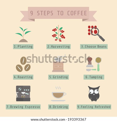 step of coffee process, young coffee sprout to espresso, flat style - stock vector