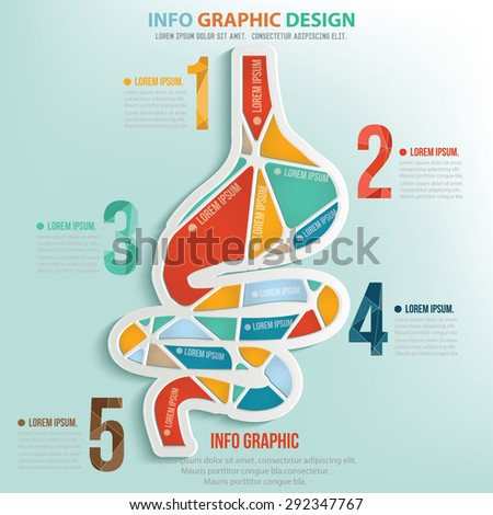 Stomach puzzle info graphic design,clean vector - stock vector