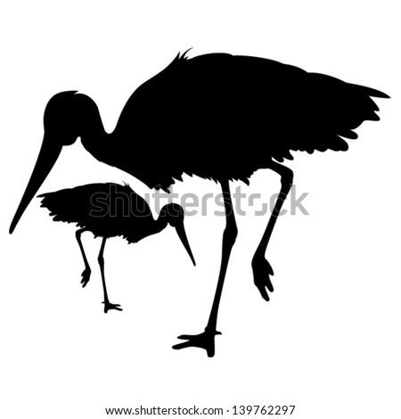 stork - stock vector