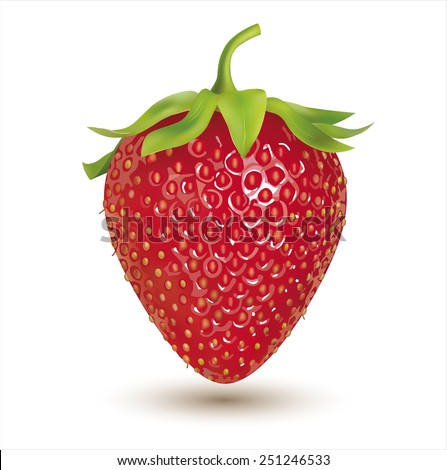 Strawberry isolated on white. Vector eps 10. - stock vector