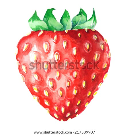strawberry watercolor isolated on white - stock vector