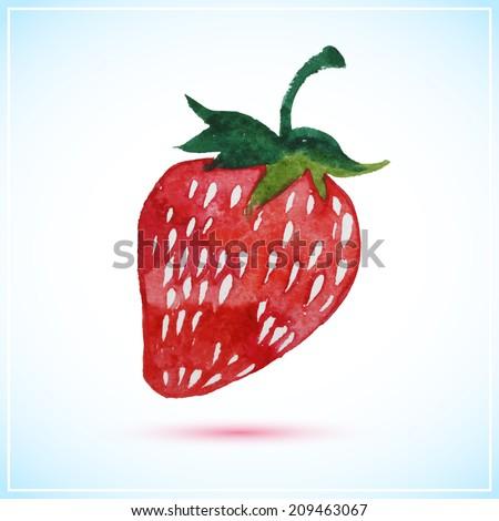 Strawberry watercolor vector illustration  - stock vector