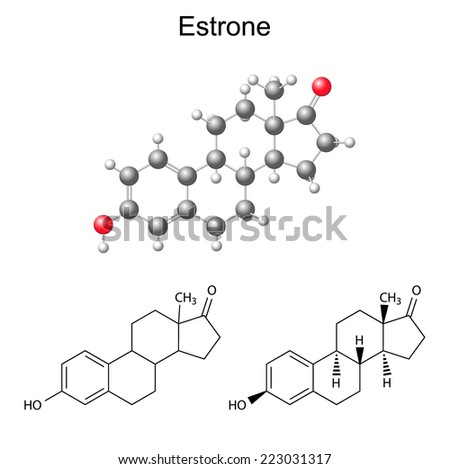 Structural chemical formulas and model of estrone molecule - female sex hormone, 2D & 3D Illustration,  isolated on white background, vector, eps8 - stock vector