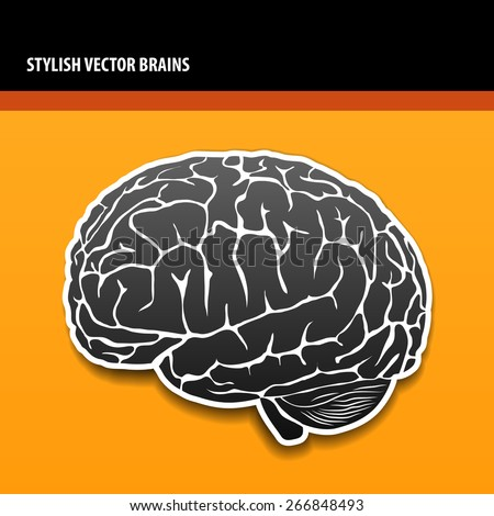 Stylish vector isolated brains - stock vector