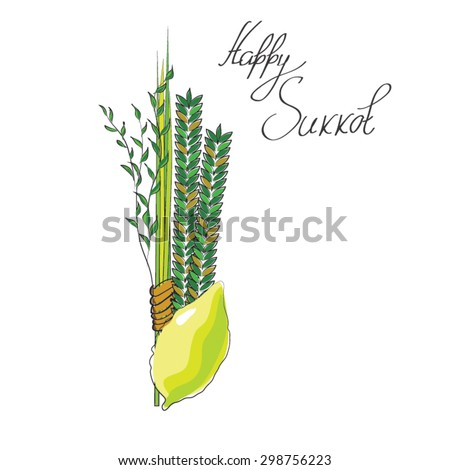 sukkot - four symbols of Jewish holiday Sukkot  species - etrog, willow, palm, myrtle. vector illustration.  - stock vector