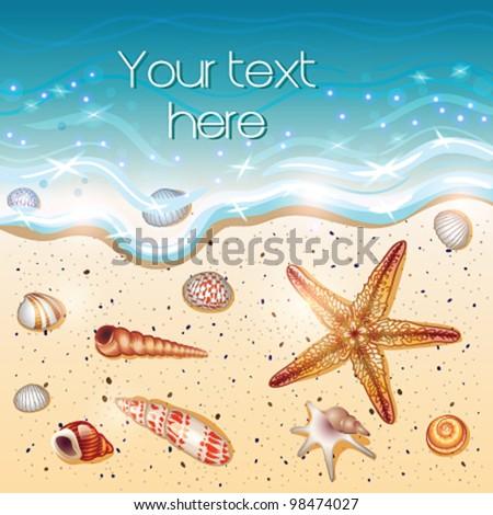 Summer background (sand shells water) - vector illustration - stock vector
