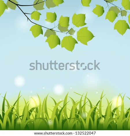 Summer background with grass and maple tree branch. - stock vector