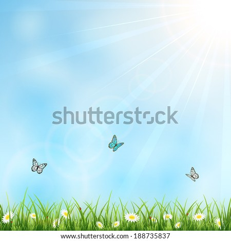 Summer background with sun, flowers, butterflies and ladybugs, illustration. - stock vector