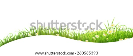 Summer banner with green grass and flowers, vector illustration - stock vector