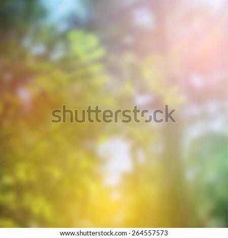 Summer design, forest trees, nature green wood sunlight background. Vector - stock vector