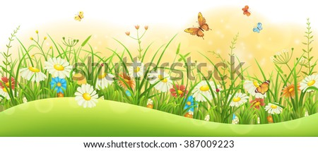 Summer floral banner with green grass, flowers and butterflies - stock vector