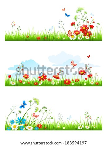 Summer grass and flowers set. Vector design elements - stock vector