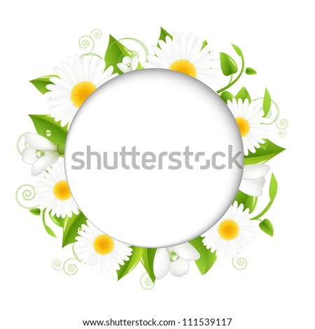 Summer illustration With Camomiles, Isolated On White Background, Vector Illustration - stock vector